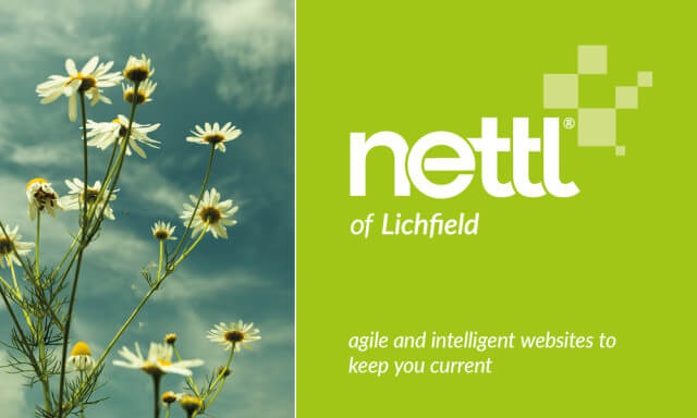 The Nettl Website Studio has arrived at Raphael Design!
